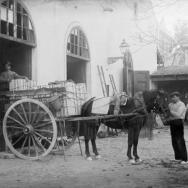CARLOS SARTHOU CARRERES. Almacén de naranjas en Carcaixent. 1925. ES.462508.ADPV/Colección Sarthou, imagen nº 00385